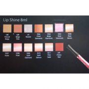 Atelier LipShine Palette