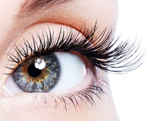 Eye Lash Extension Course Face Agency Adelaide